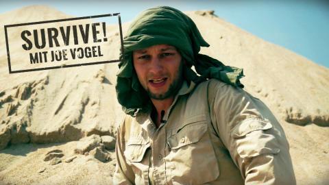 Survive! Mit Joe Vogel