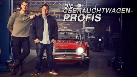 Die Gebrauchtwagen-Profis