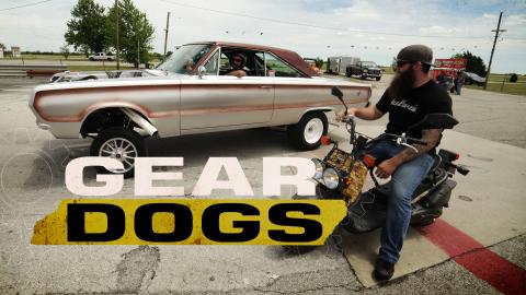 Gear Dogs