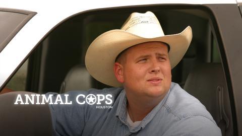 Animal Cops Houston
