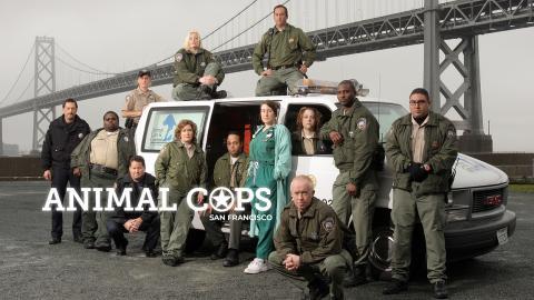 Animal Cops San Francisco