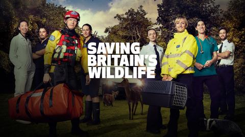 Saving Britain's Wildlife