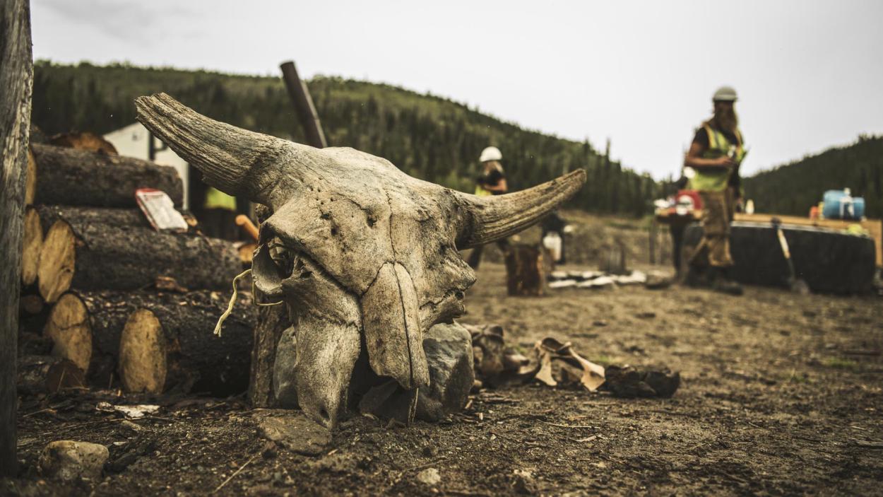 Goldrausch am Yukon: Mitten in der Natur