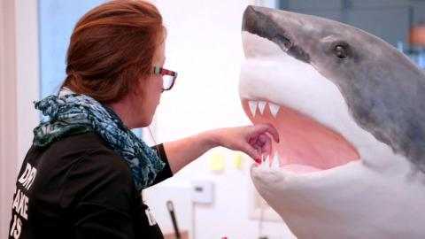 {S}02.{E}01: 30 Jahre Shark Week