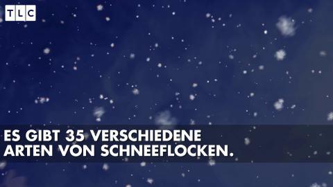 Faktencheck: Wusstest du das alles schon über Schnee?