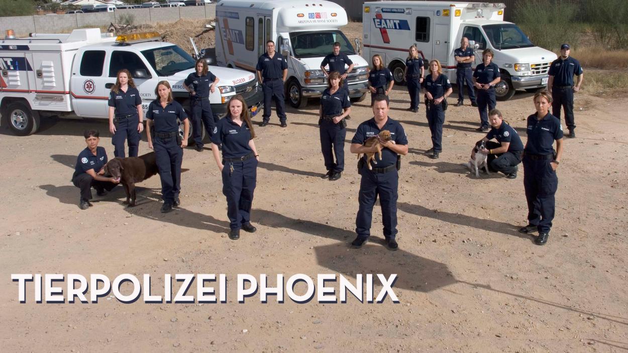 TIERPOLIZEI PHOENIX - STAFFEL 1 ONLINE!