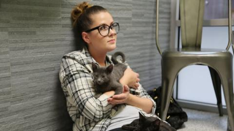 {S}08.{E}05: Kitten Impossible: Roadtrip Rescue