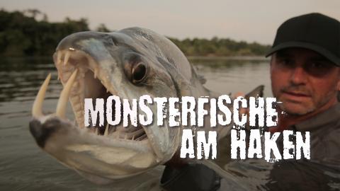 Monsterfische am Haken