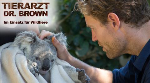 Tierarzt Dr. Brown - Im Einsatz für Wildtiere