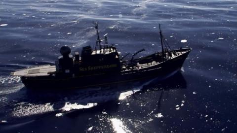 {E}07: Jagd auf die Nisshin Maru