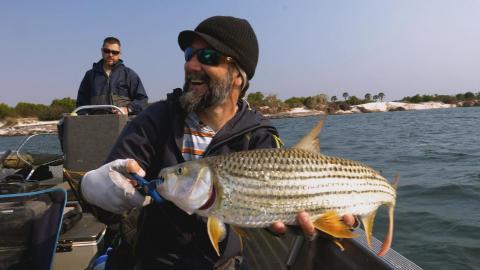 {E}02: Die Tigerfische von Sambia