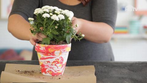 DIY: Verwandle langweilige Blumentöpfe