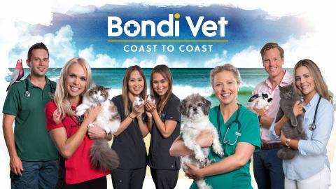 Bondi Vet: Coast To Coast