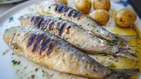 {S}01.{E}04. Sardines