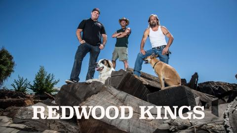 Redwood Kings