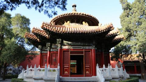 Giving Back In Beijing