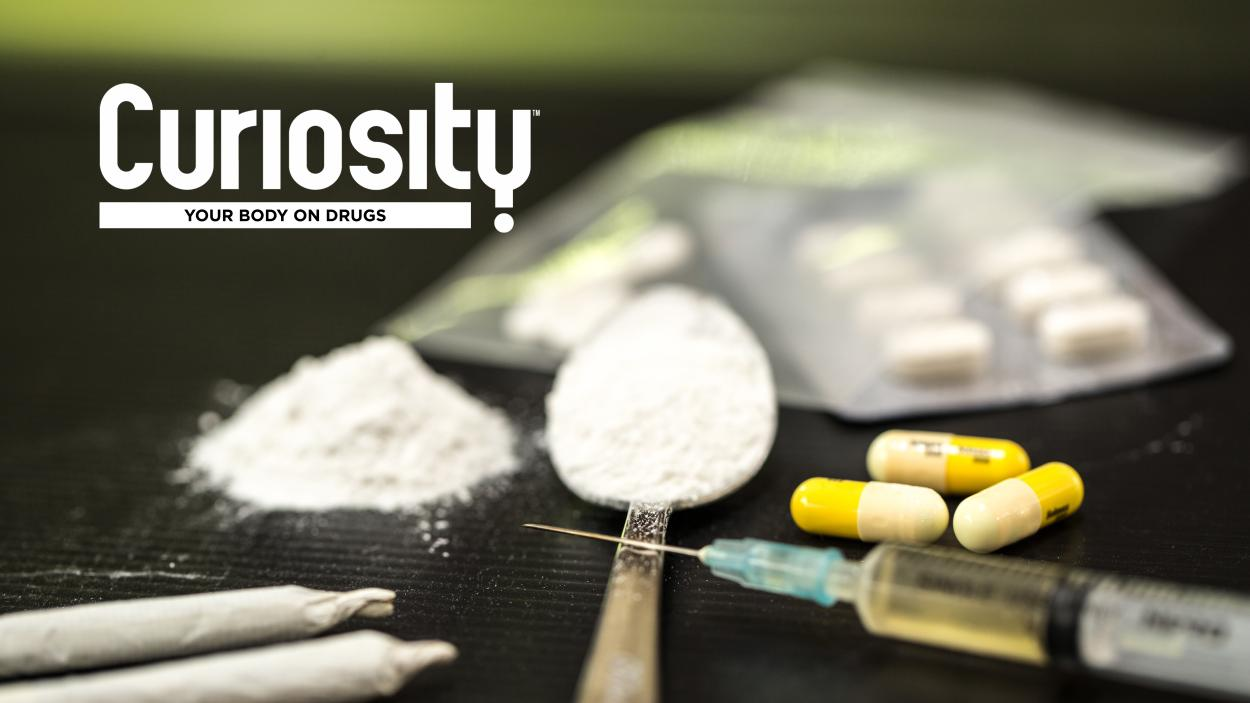 Curiosity: Your Body On Drugs