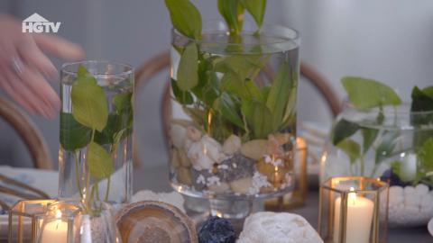 Ein Wassergarten für dein Zuhause