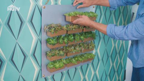 DIY: Preiswerter Hängegarten