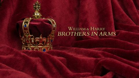 William And Harry Brothers In Arms