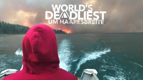 World's Deadliest - Um Haaresbreite