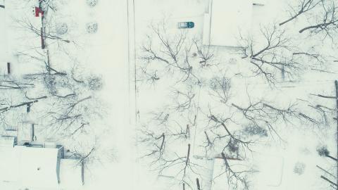 {E}01: Cold Blue