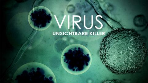 VIRUS - Unsichtbare Killer