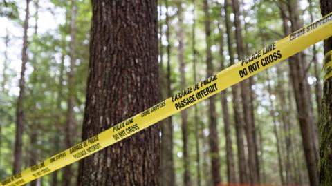 {E}02: Andrew Scanlan: Murder In The Woods