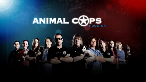 Animal Cops Houston