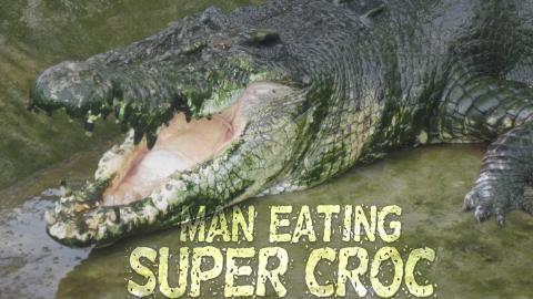 Man-Eating Super Croc