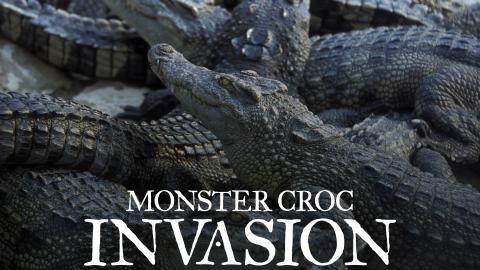 Monster Croc Invasion