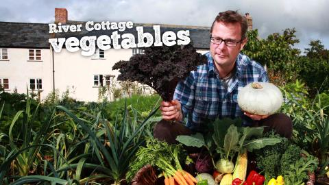 River Cottage Vegetables