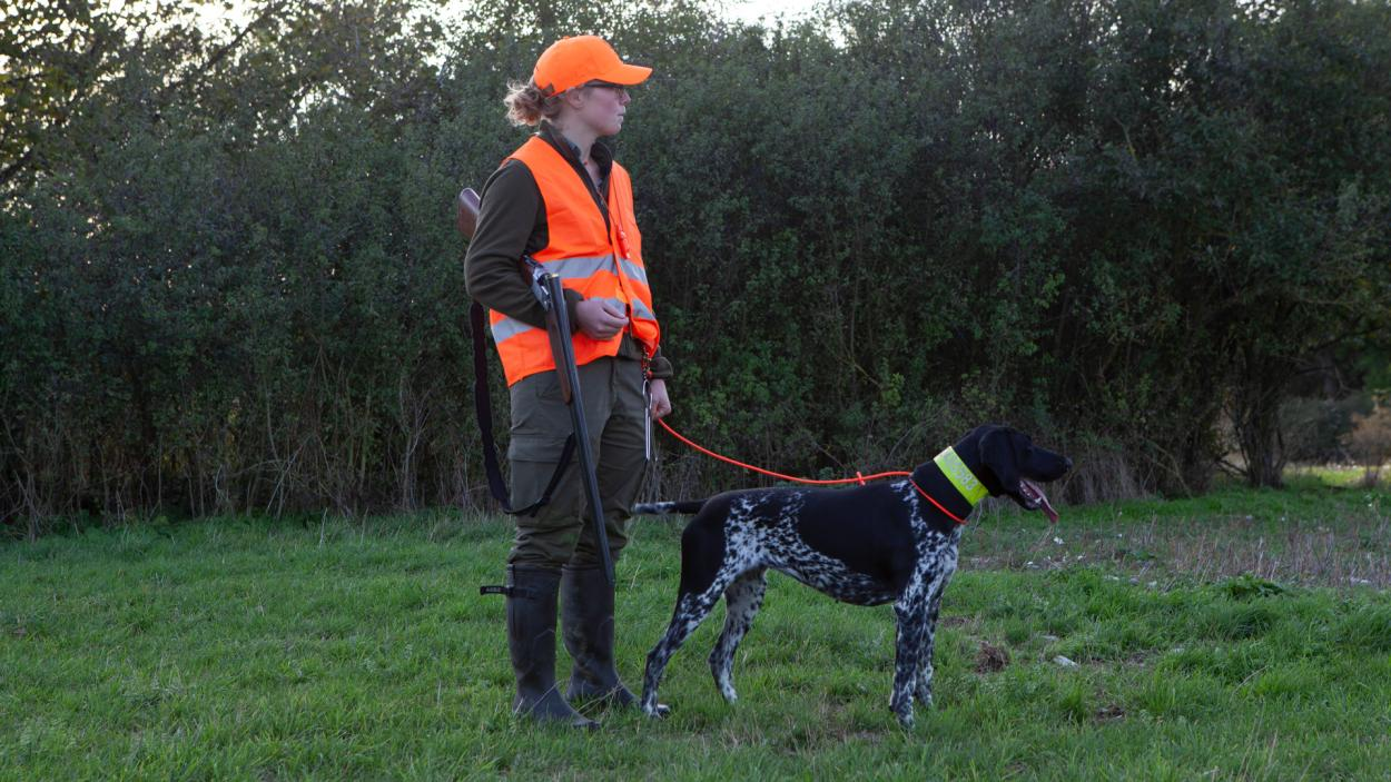 Jägerleben: Hundezucht